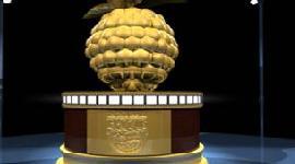 Razzie Nominees Announced