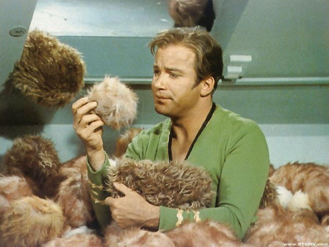 Adopt A Tribble at Comic-Con