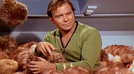 "Tribbles In Next ""Trek""?"